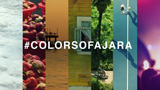 944 - Colors Of Ajara